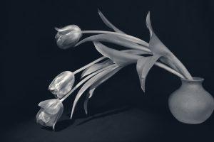 Marian-Moyle_Monotone_Tulips